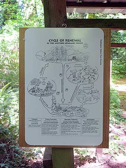 Natural Science at Camp Wa-Ri-Ki