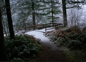 Time for a winter retreat at Camp Wa-Ri-Ki
