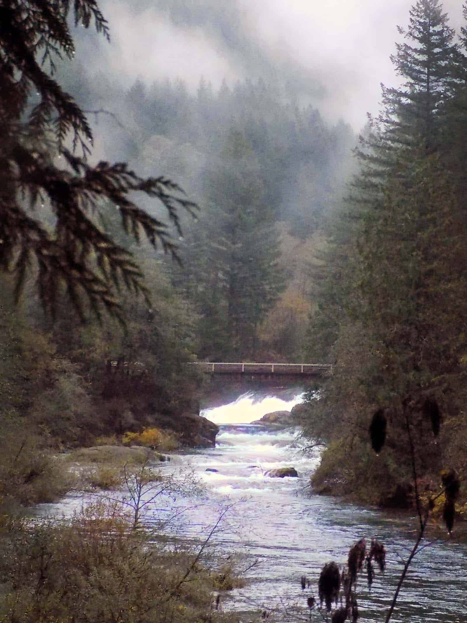 Washougal River seen from Camp Wa-Ri-Ki nestled in the misty foothills.