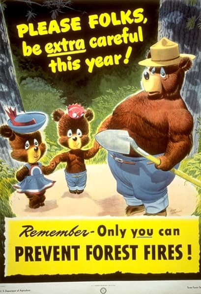 Smokey Bear Updated Campaign
