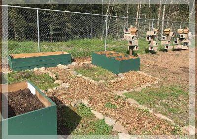 gardening ladybugs